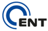 Cent Consulting | SAP ABAP Outsourcing, Training, Consultants